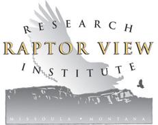 Raptor View Logo